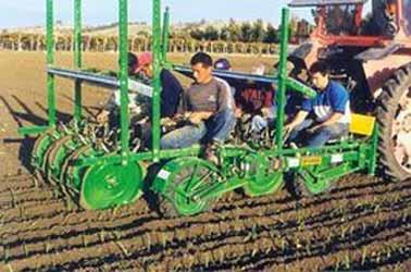 Машина рассадопосадочная полуавтоматическая для посадки с земляным комом (Itala)