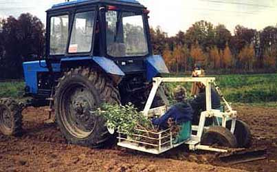 Машина для посадки сеянцев и саженцев плодовых и ягодных растений (МПС-1)