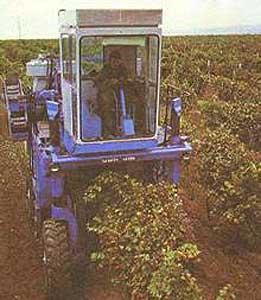Комбайн универсальный виноградоуборочный (СВК-3М)