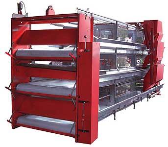Оборудование клеточное для выращивания ремонтного молодняка и бройлеров (КП-25)