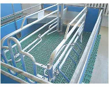 Оборудование станочное для подсосных свиноматок с поросятами (ГОСНИТИ)
