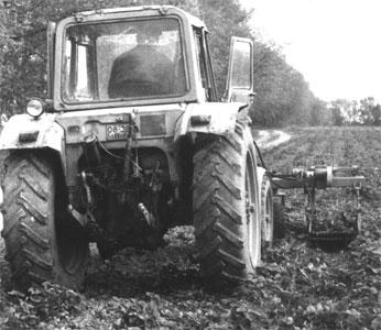 Машина для выкопки рассады земляники (МРВ-500)