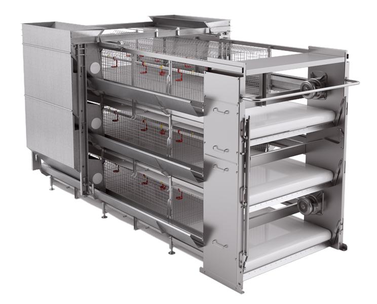 Оборудование клеточное для выращивания ремонтного молодняка и цыплят-бройлеров (JUNIOR)