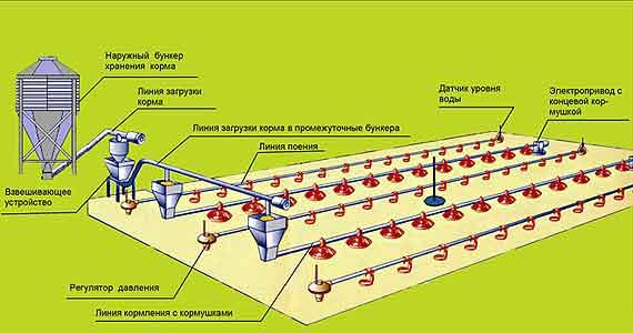 Оборудование для напольного выращивания бройлеров (ОПБ)