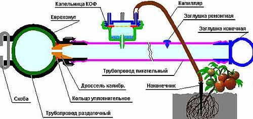 Система капельного орошения с применением капельниц и капилляров