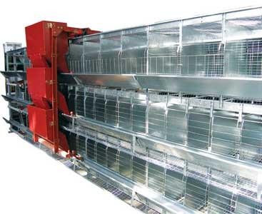 Комплект оборудования для содержания селекционного стада кур и петухов (СБ-3)