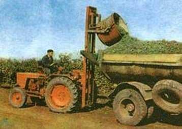 Погрузчик виноградниковый навесной (АВН-0,5А)