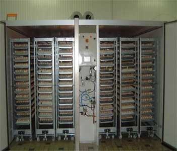 Инкубатор (ЕМКА-ПСМ)